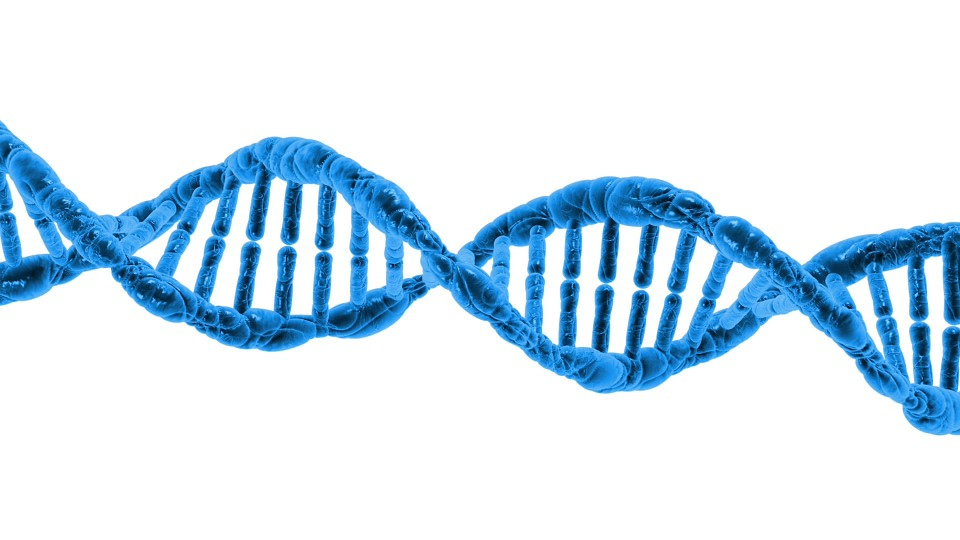 DNA Pharmacogenomics