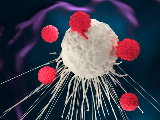 T cells around a cancer cell